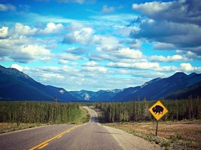 Go_Untamed_Winston_Wolfrider_Canada_Bison2_Sky
