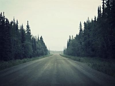 Go_Untamed_Winston_Wolfrider_Canada_Dempster_Highway3