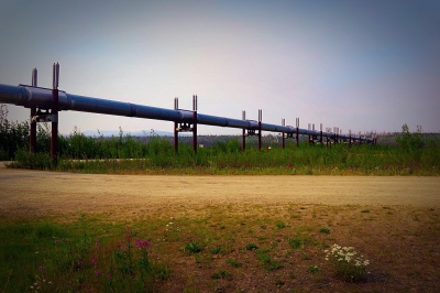 Go_Untamed_Winston_Wolfrider_Alaska_Pipeline