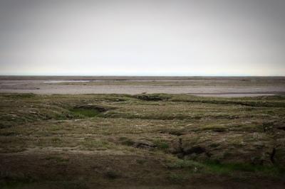 Go_Untamed_Winston_Wolfrider_Alaska_Dalton_Highway_Arctic_Prudhoe_Bay_Tundra