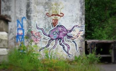 Go_Untamed_Winston_Wolfrider_Alaska_Whittier_Octopus
