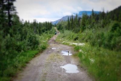 Go_Untamed_Winston_Wolfrider_Alaska_Wrangell_St_Elias_Nabesna2
