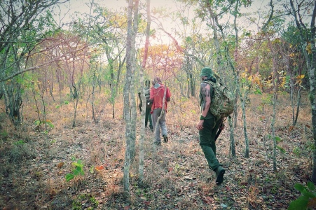 anti poaching malawi