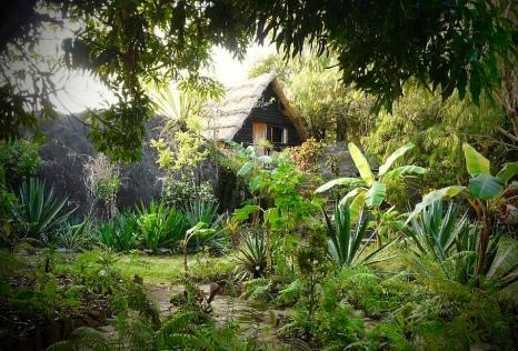 Malawi-safari-Malawi-GoUntamed