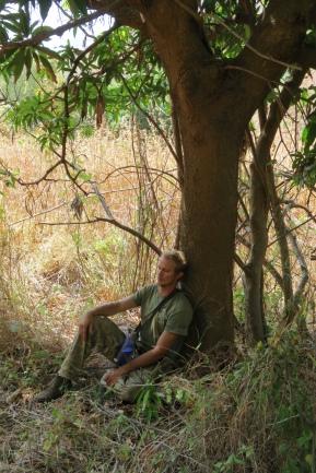 Go_Untamed_winstonwolfrider_malaria_Tree