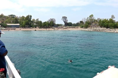GoUntamed_Malawi_Chizamulu_Swimming