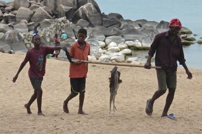 safari_go_untamed_fishing