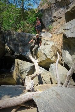 Go_Untamed_Climbing_Trees