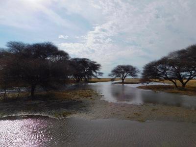 GoUntamed_Desert_Kalahari_